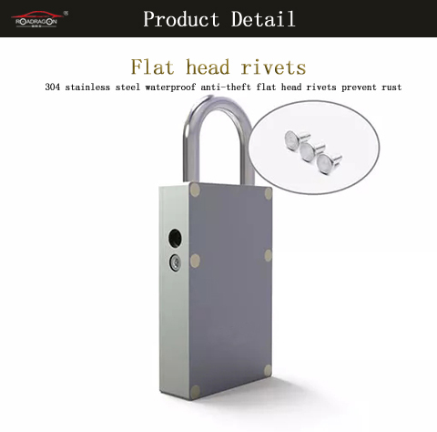 Short Lead Time for Government Fleet Management -