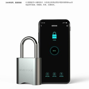 Roadragon Round Edge Padlock Fingerprint Bluetooth Waterproof Padlock