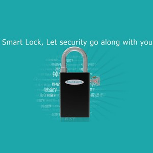 Lock and deadbolt set padlock system with NFC and FRID solution