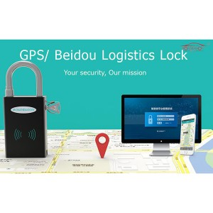 Fast delivery Fleet Assets -